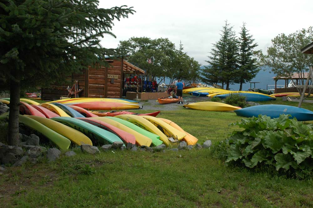 Miller's Landing (Seward RV Park) Lots Going on with Kayaks and Fishing