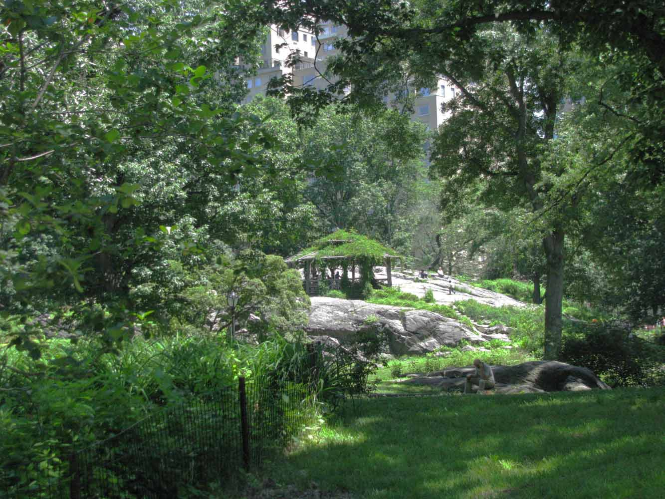 Central Park in June