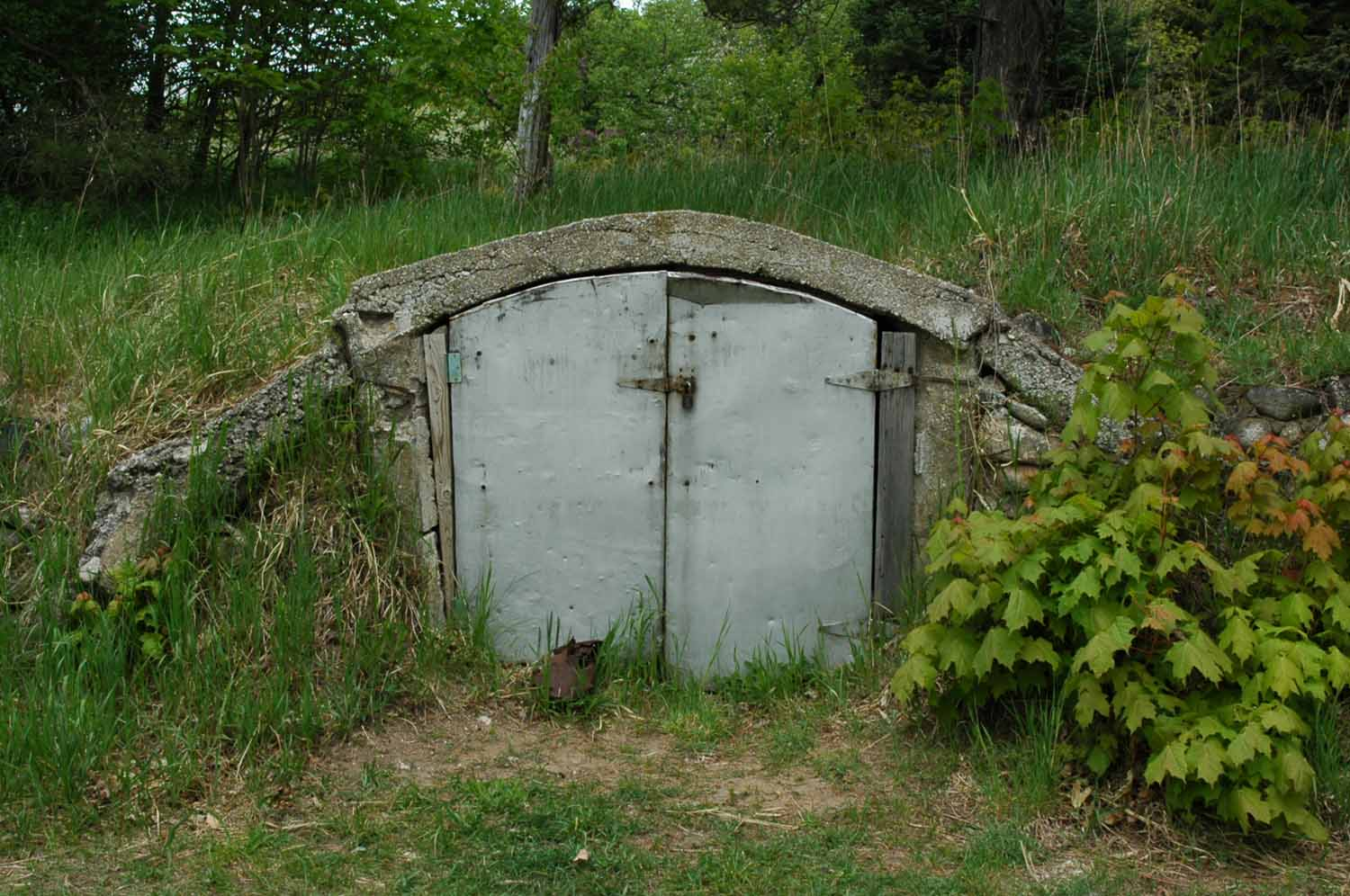Treat root cellar