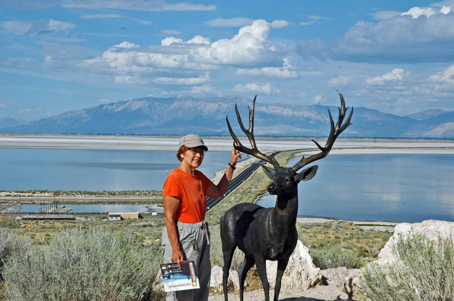 Lots to see and do on the island - there arealso buffalo, antelope and other wild life