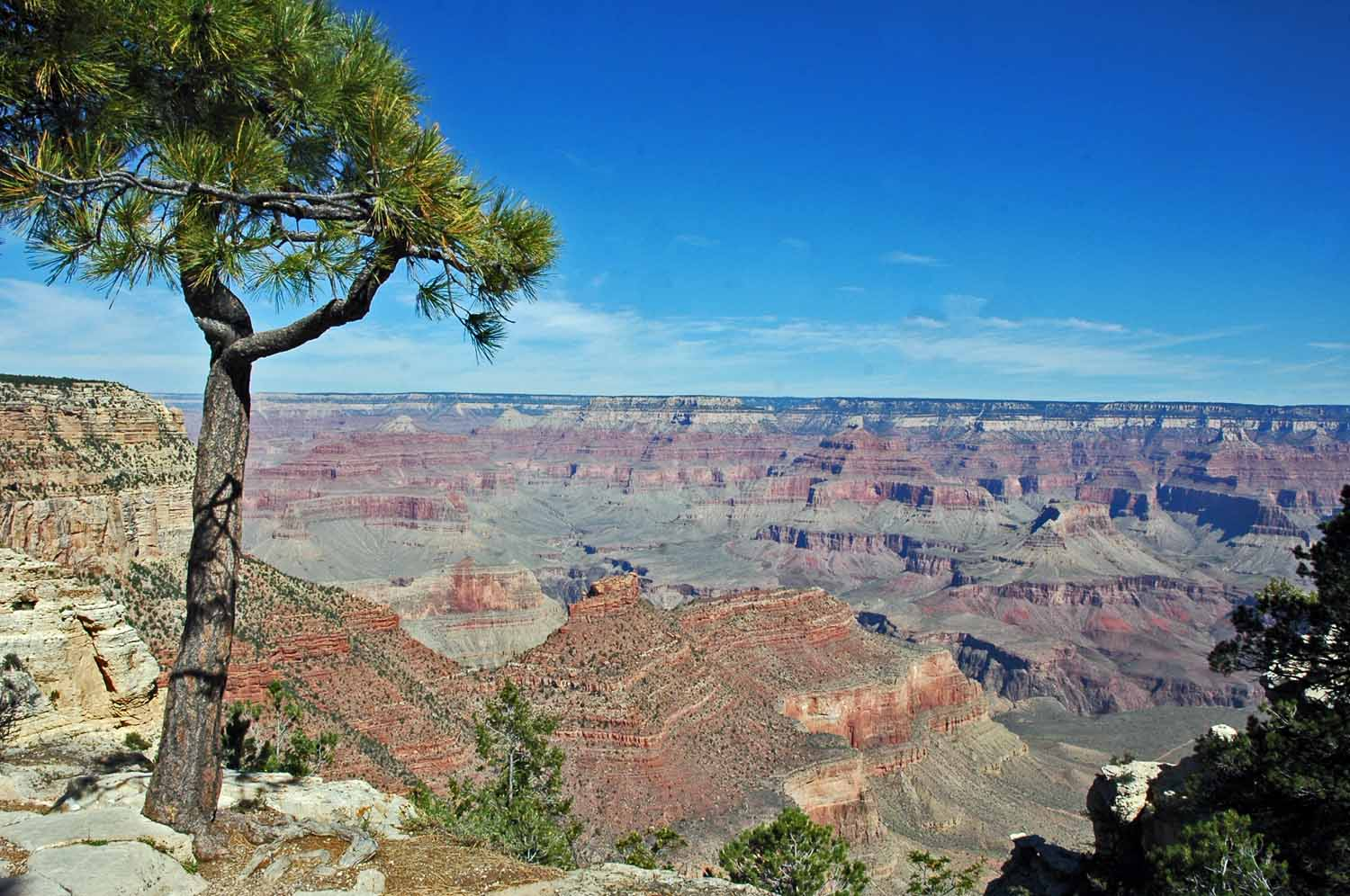 South Rim Trail - East