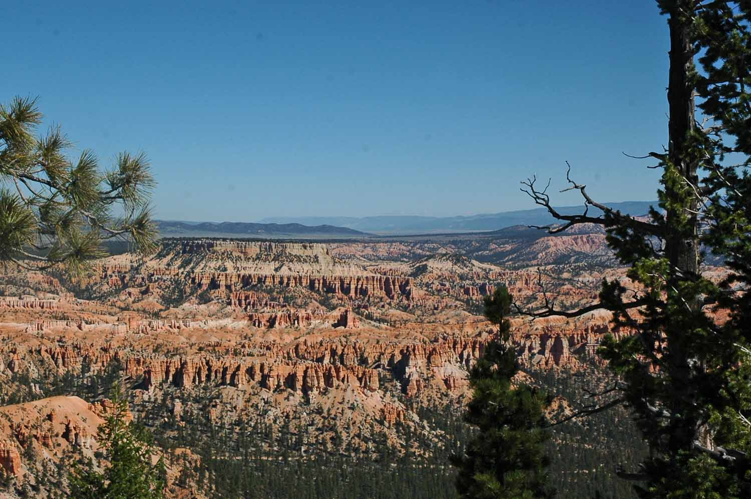 More Bryce Canyon drive...still lots of color