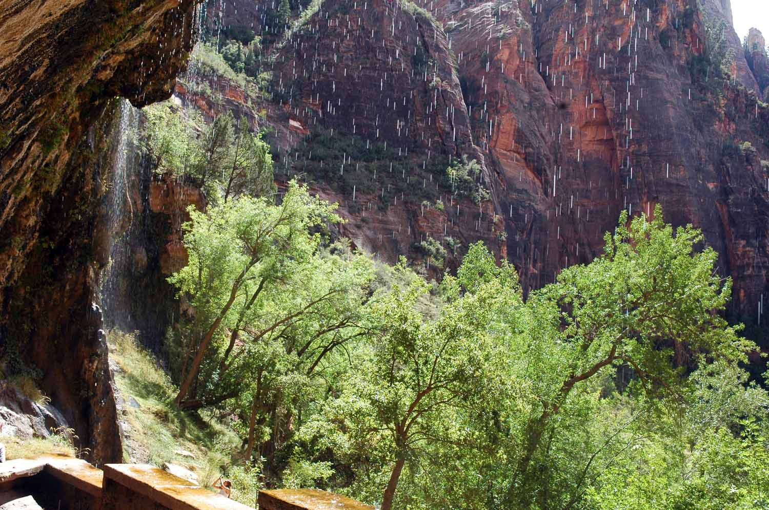 Weeping Rock Trail...lots of hanging gardens here
