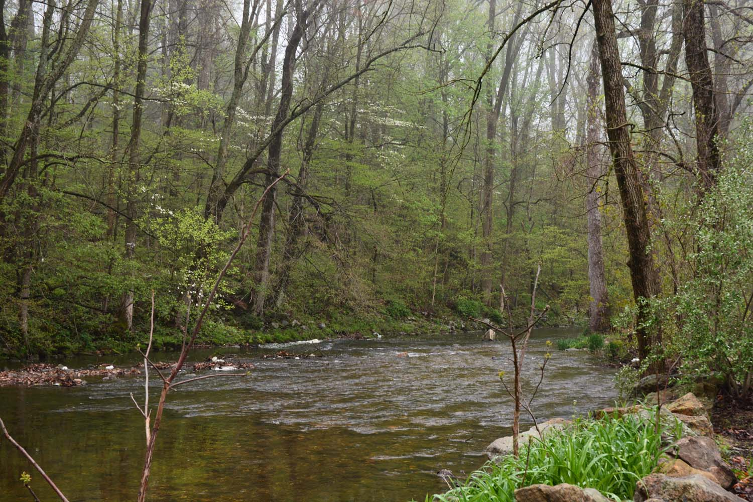 Brandywine Creek flows through the RV park