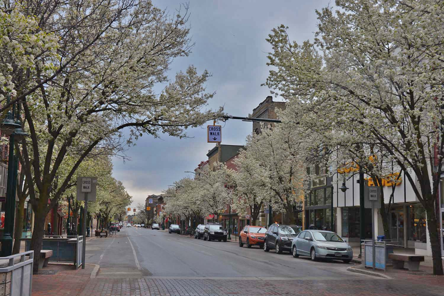 Downtown Traverse City in the Spring