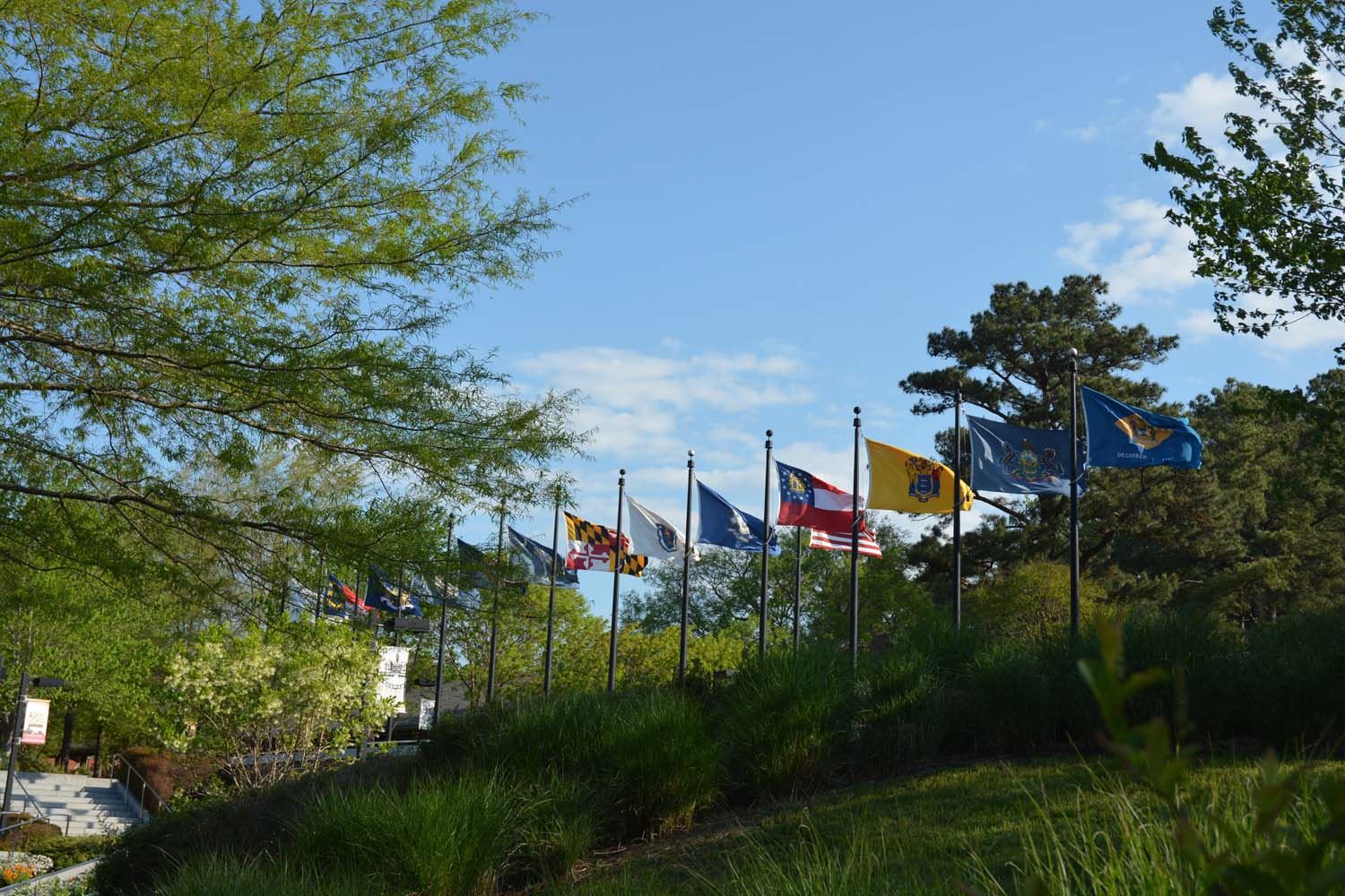 Flag at the visitor center - blowing in the wind