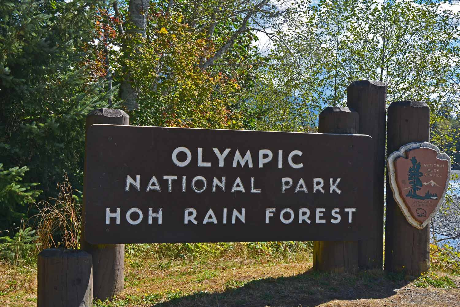 Olympic National Park is the setting for a temperate rain forest.  One of the places we visited was Hoh which gets high marks for it beauty.