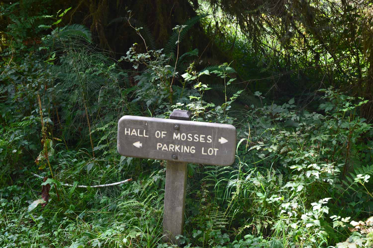 This sign tells one a lot about what to expect on this hike.