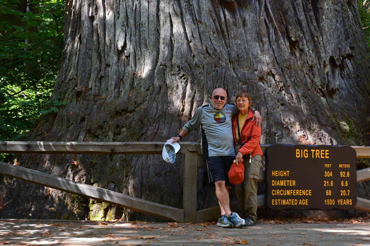 Jan and Larry in front of the Big Tree...interesting numbers.  There are trees here over 3,000 years old.