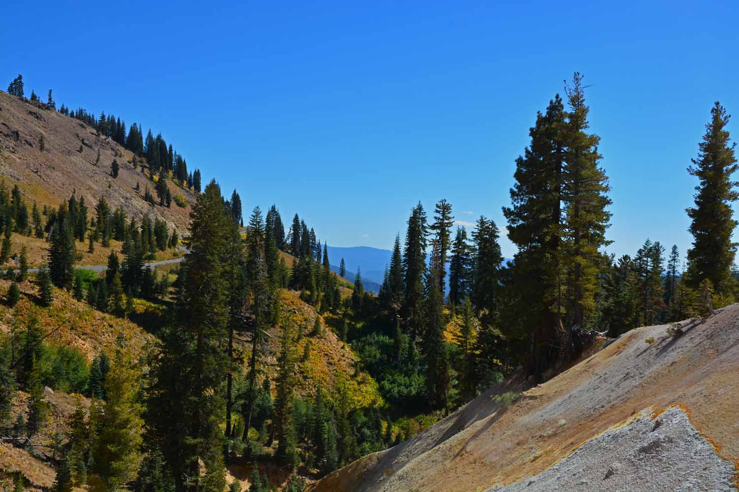 As you come down off the mountain things got greener at Lassen.