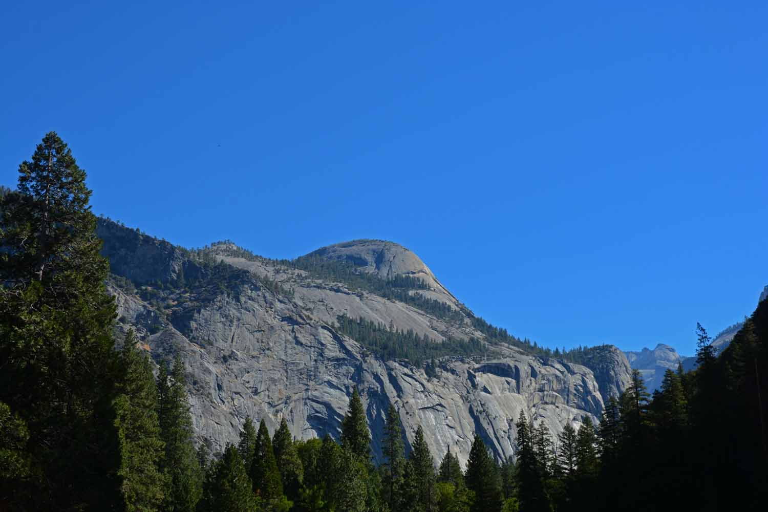Half Dome from the valley floor.