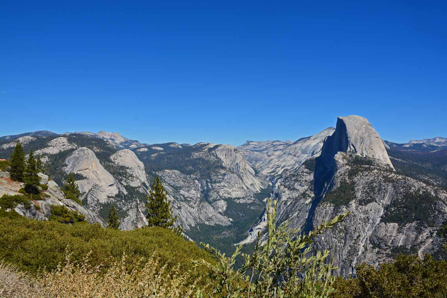 Half Dome from the side and up on the mountain.  You had to be there to get the full impact of the grandeur of the park.