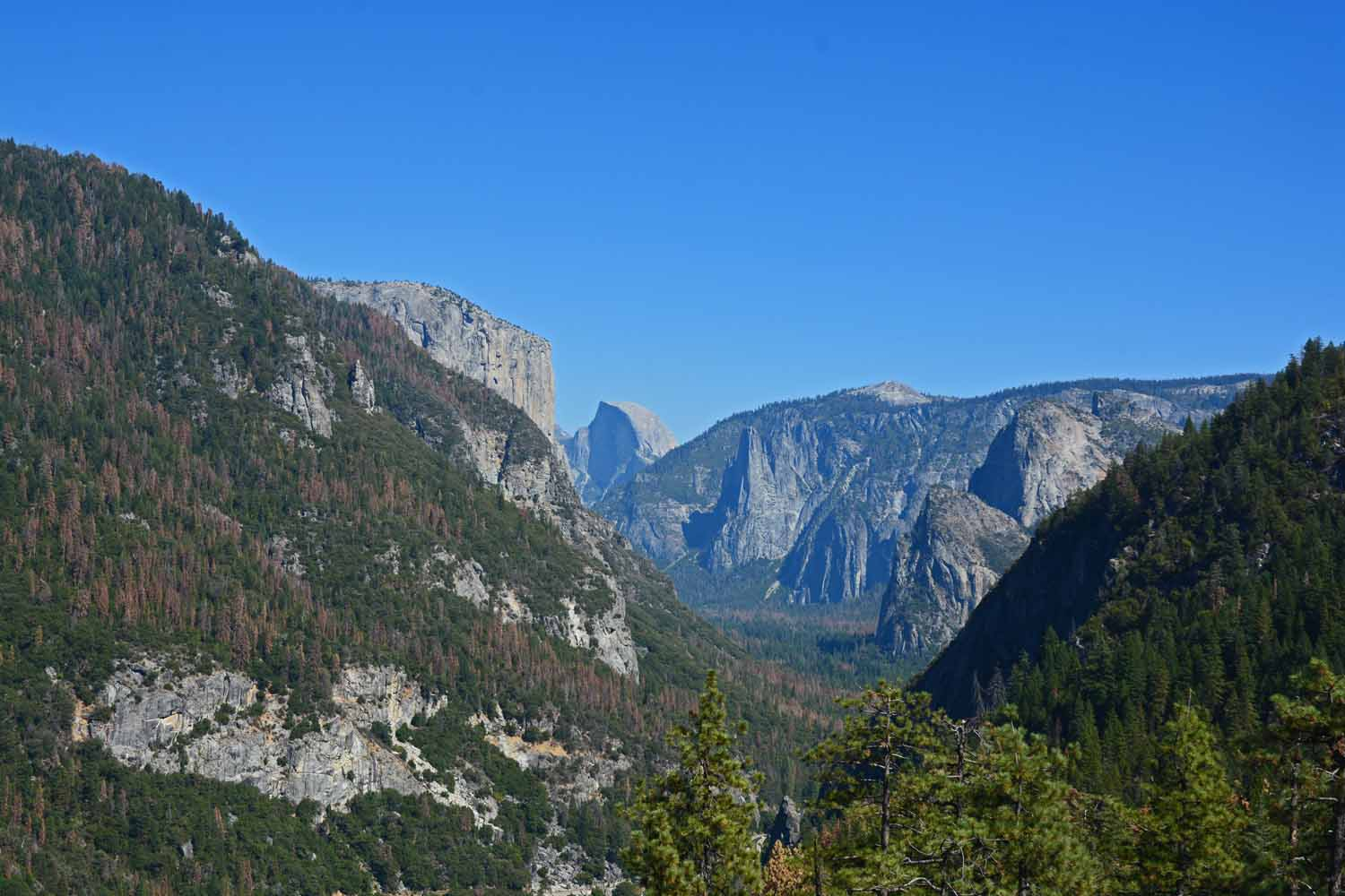 Can you pick out Half Dome...  Taken from the Glacier Point road.