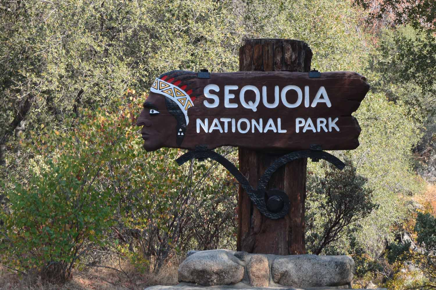 Sequoia was a day drive from Yosemite.  Another awesome national park in the Sierra Nevada Mountains.