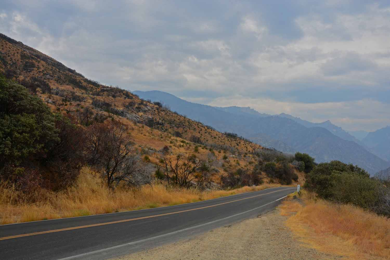We took a short cut to King National Park which still takes several hours.  The drive through the country was an exceptional experience one that we really enjoyed.  However coming back to our RV site at night the trip seemed twice as long...