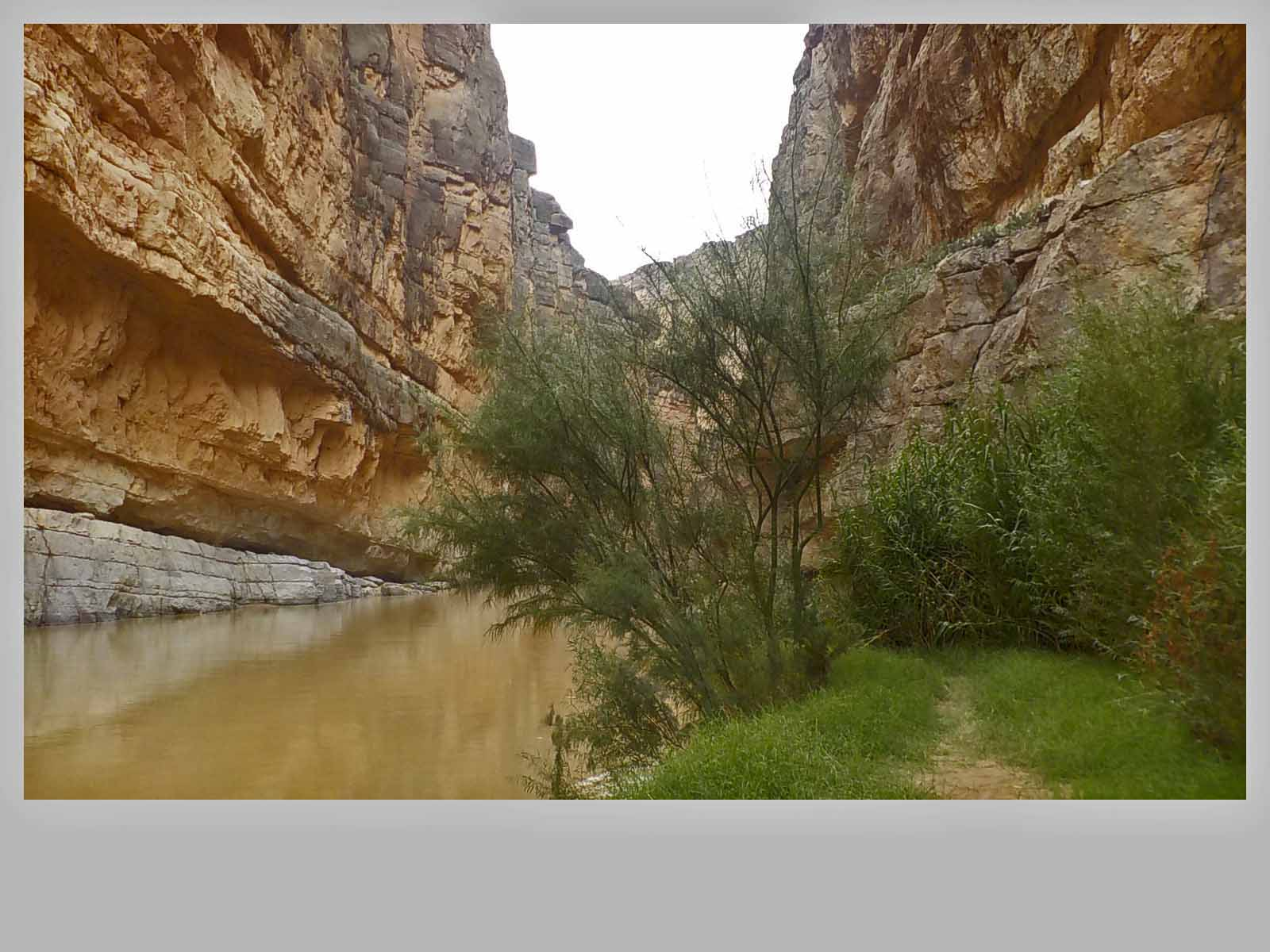 The muddy Rio Grande along the Santa Elena Canyon Trail.