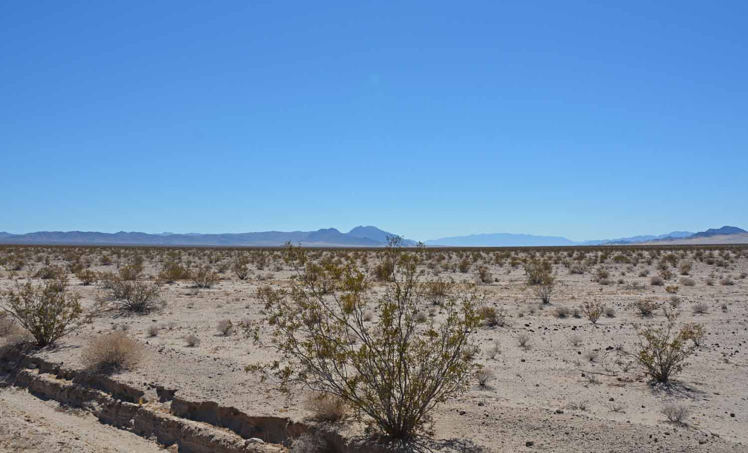 Ok, we are still in the desert.  Yes it was very hot.  The tourist season does not start here until November.
