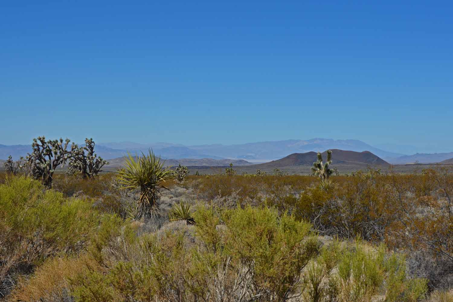Mojave has mountains too.  Typical shot of the landscape.
