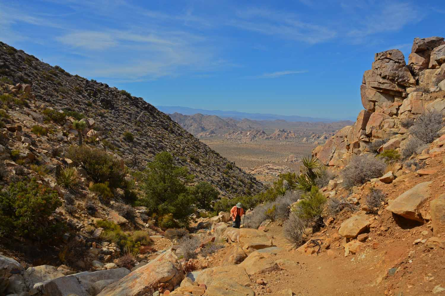 Here is Jan working her way up the Ryan's Mountain Trail...