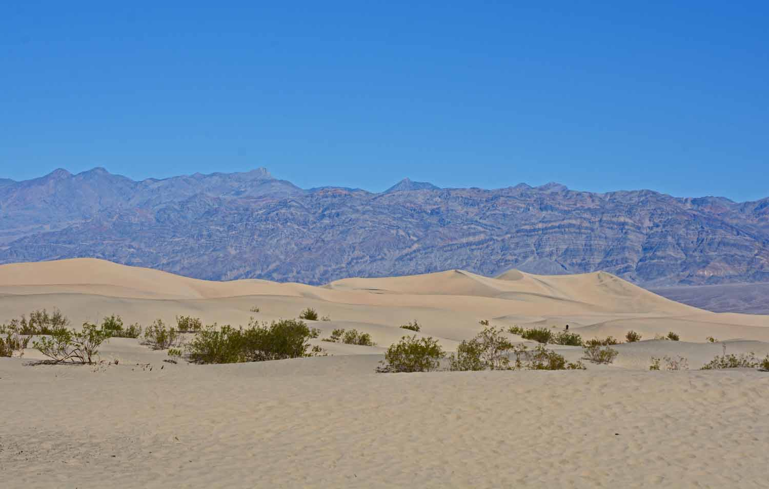 Not much real sand in the desert.  There are some dunes in this one localize area.