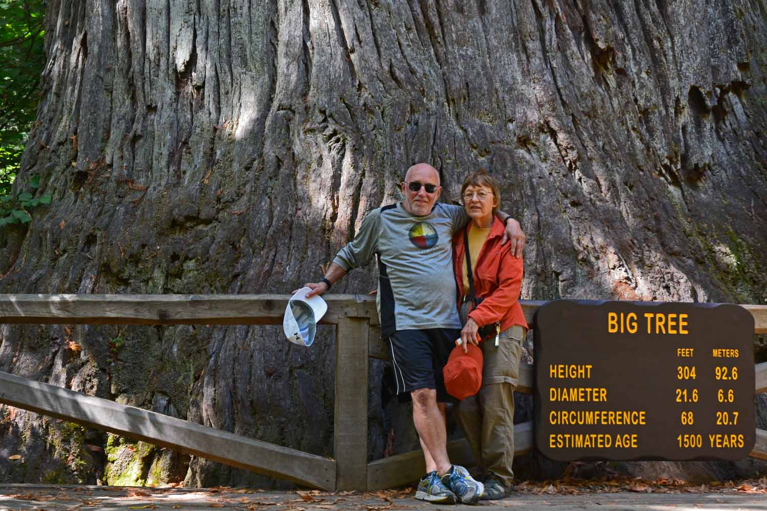Great day in the Redwoods National Park...these huge trees are intimidating!