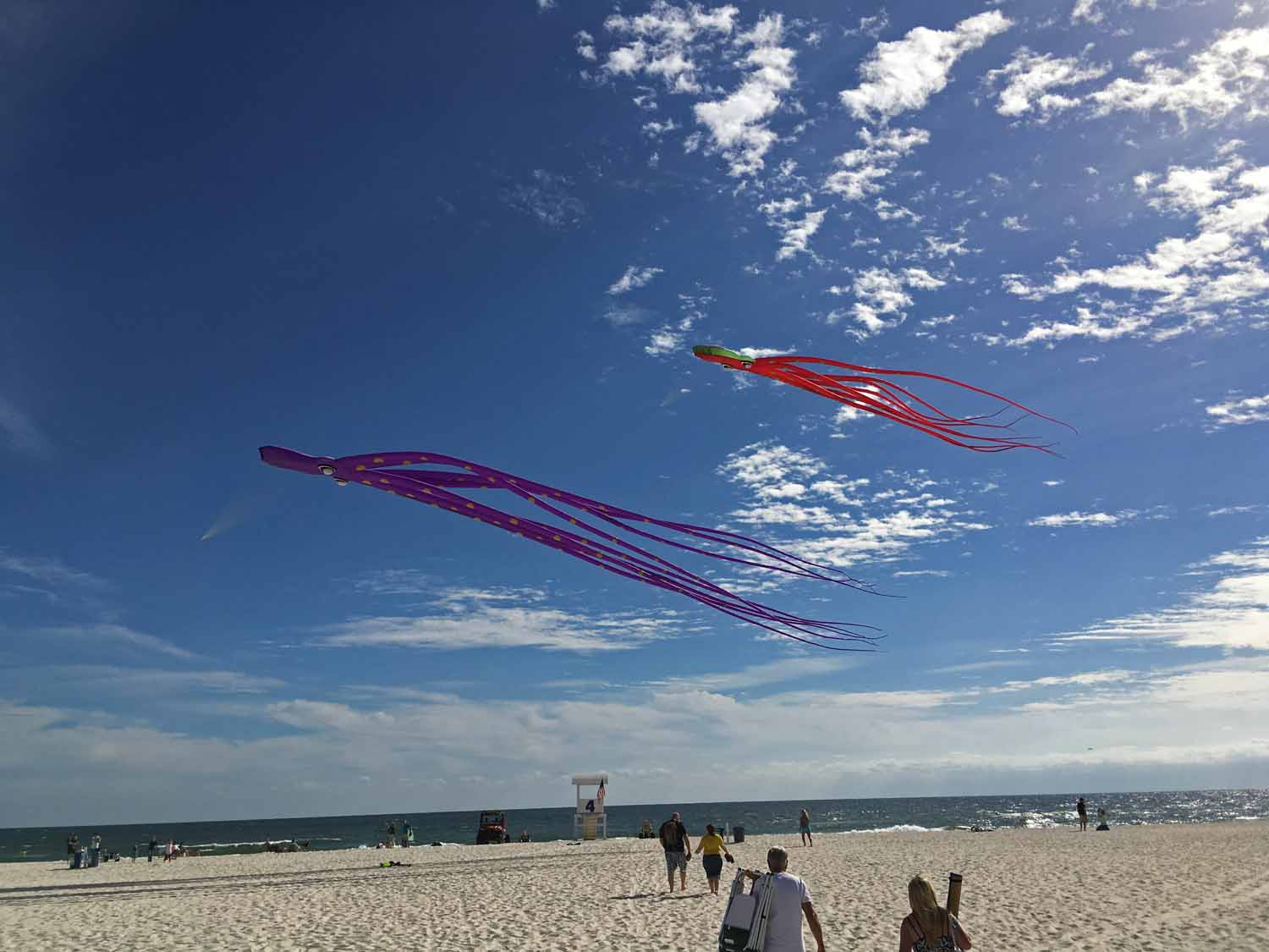 Loves these kites...looks like a great hobby - stay tuned as this may become the next diversion for us...