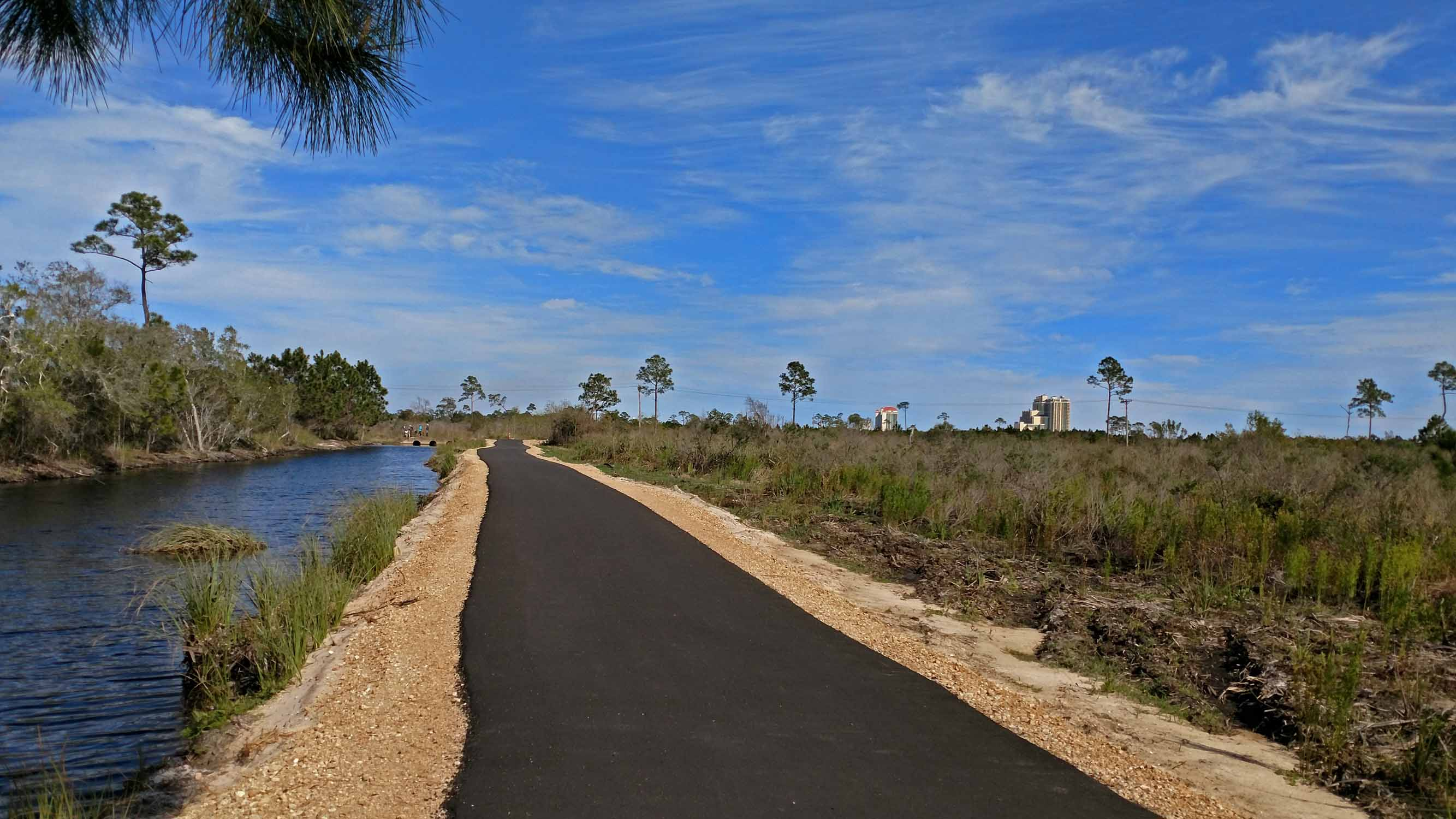 Lots of new trails at the Gulf Shores State Park...there were very few days you could not get out on your bike