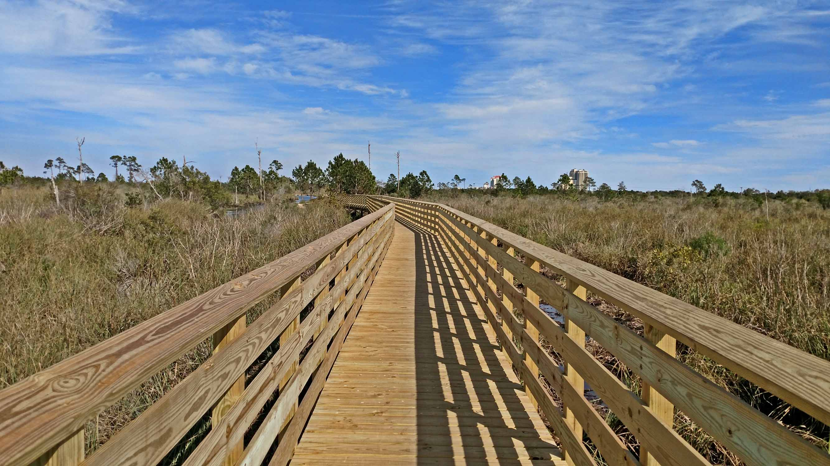 The trail system includes many bridges through the wetlands where you can get up close and personal with the wild life