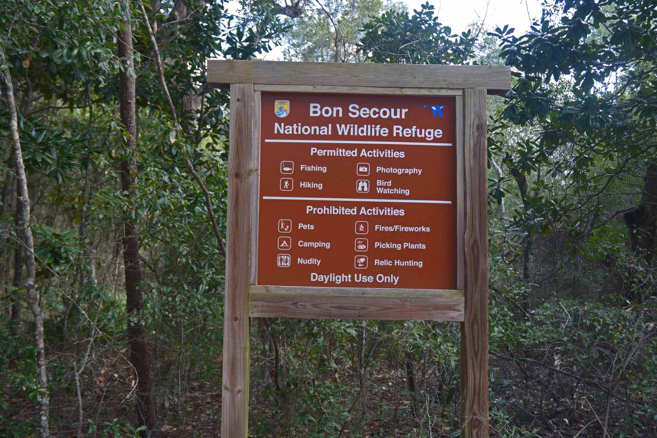 Bon Secour is where you can run into almost anything on the trail...Good hiking and a great place to explore...