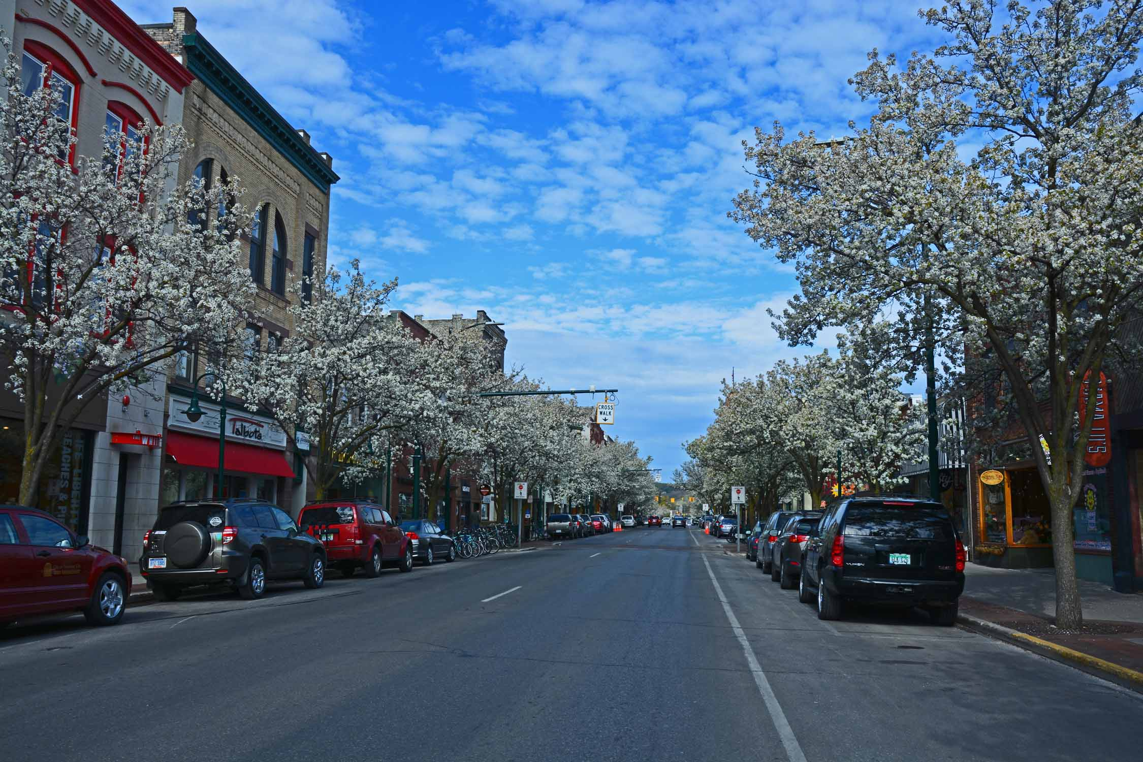 Spring welcomed us back to Traverse City with all the flowering trees!